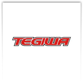 Tegiwa Imports